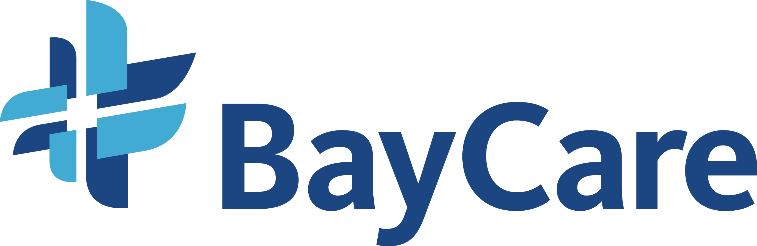 BayCare-Quality Sharing Day logo