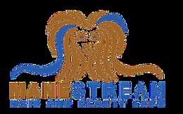 Mane Stream Hair And Beauty Expo 2018 logo