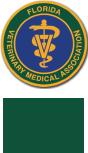 FVMA Annual Conference logo