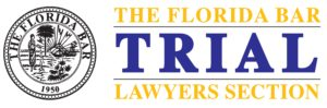 2020 Trial Lawyers Section Mock Trial Competition & Teachers Law School logo